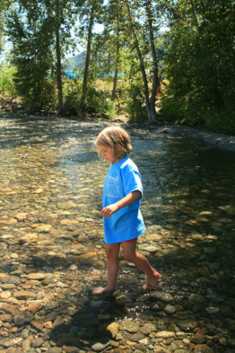 Olive Yonko cools off in the Methow River near the Twisp Town Park. Photo by Marcy Stamper