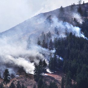 Prescribed burn set for this fall in valley