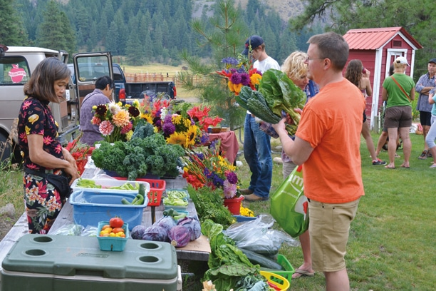 "Produce and flower grower Nan Walker is one of the ""regulars"" at the Mazama Market. Photo by Laurelle Walsh"
