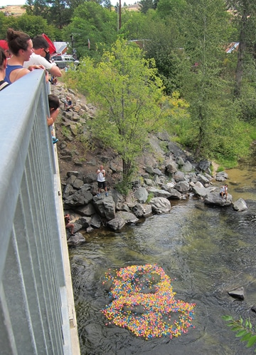 After being dumped into the river, Kiwanis ducks prepare to start their race downstream. Photo by Don Nelson