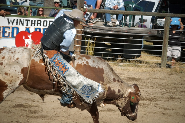 Twisp bronc and bull rider Aaron Hammer didn't make the whistle on this round. Photo by Mike Maltais