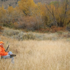 Hunters: Watch overhead and underfoot this deer season