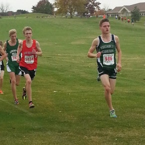 Daily leads cross-country Lions to fifth at state meet