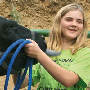 Shelby White of Twisp readied her steer, T-bone, for the 2013 county fair. File photo by Marcy Stamper