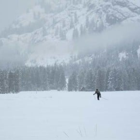 Out there. A solo skier took advantage of new snow at a Mazama meadow last weekend. Snow has continued to accumulate throughout the week, creating excellent end-of-season conditions.  Photo by Don Nelson
