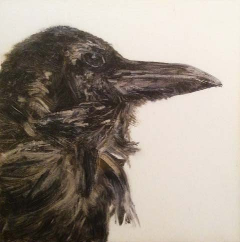 Raven by Gillian Freney.