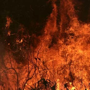 Prescribed burning plan is set for valley