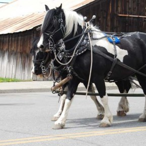 On Tuesday, May 6, the Ride to Rendezvous passed through downtown Twisp. Photo by Dana Sphar