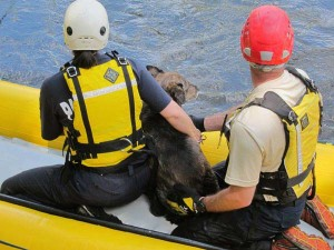 Vikki and Ottis Buzzard keep Jessie close as the raft is pulled to shore. Photo by Don Nelson