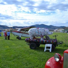 Visitors strolled among a shiny line of collectible cars and aeroplanes — and a pig. Photo by Laurelle Walsh