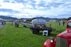 Visitors strolled among a shiny line of collectible cars and aeroplanes —and a pig. Photo by Laurelle Walsh