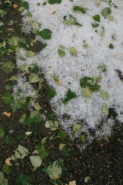 Wednesday's storm left piles of hail on Twisp River Road. Photo by Marcy Stamper