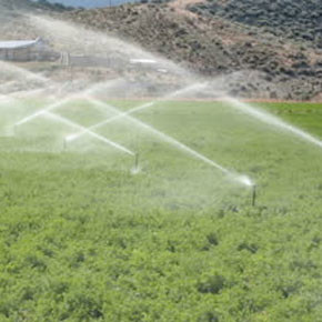 Some irrigation district members in Twisp will be getting water soon