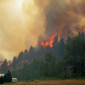 No penalties to change status for land damaged by fire, flood