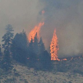 A wildfire glossary: what the terms mean