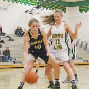 Lady Lions' season ends in first round of district tournament