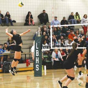 Lady Lions keep it close but lose in volleyball
