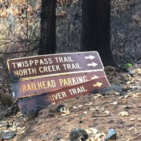 Forest Service evaluating fire-related road, trail closures