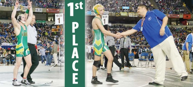 Mountain Lions tie for third at state wrestling meet