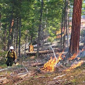 Forecast: dry summer with familiar arsenal for fire prevention, suppression