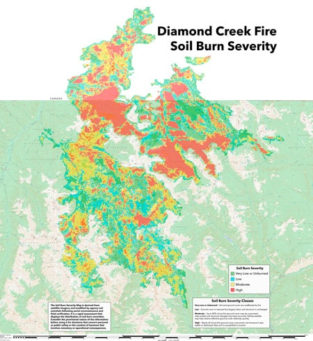 Diamond Creek Fire Assessment Identifies Long Term Damage To Trails