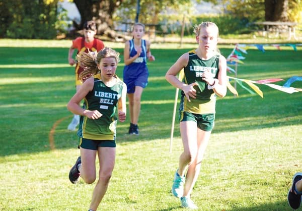 Boys, girls claim district cross-country titles again