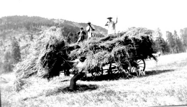 Haying looked a little different in the early years at the Thurlow farm. Photo reprinted from Methow Valley Pioneers
