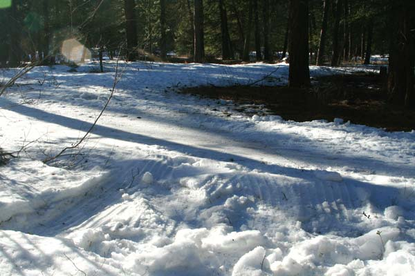 Photo by Marcy Stamper Methow Trails has been working year-round on trails maintenance to preserve the ski surface even in winters with little snow — and to avoid situations like this.